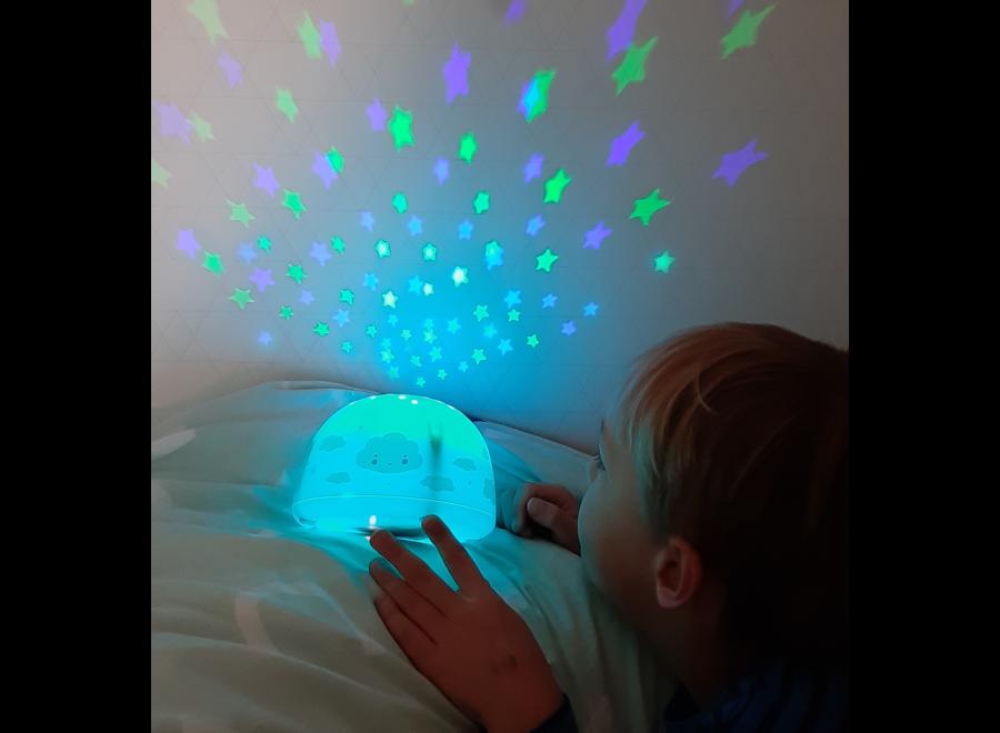 Projector Lamp – Wolk