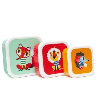 Petit Monkey Lunchbox Animals set van 3 doosjes | Petit Monkey