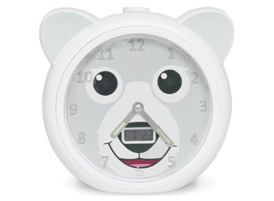 Slaaptrainer Bobby the Bear | Zazu