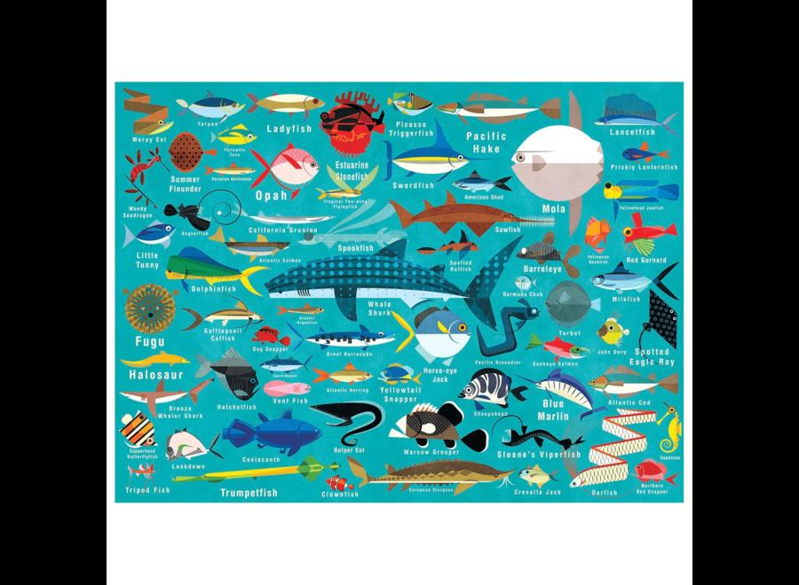Ocean Life - 1000st | Mudpuppy