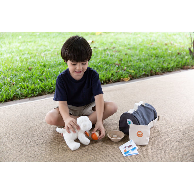 Houten Dierenzorg set | Plan Toys