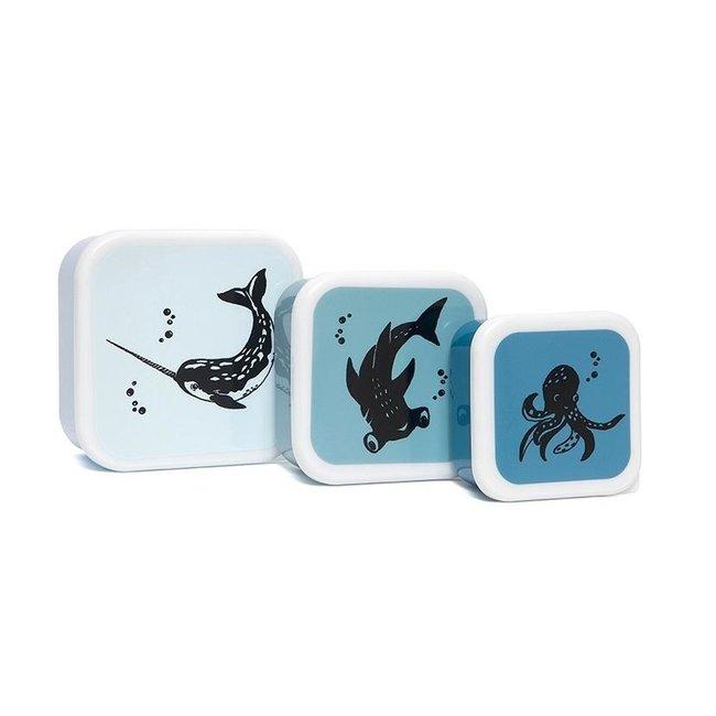 Petit Monkey Lunchbox Sea Animals - Set van 3 | Petit Monkey
