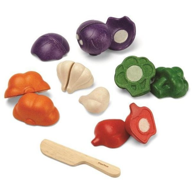 Plan Toys Groenten set in hout - 5 kleuren