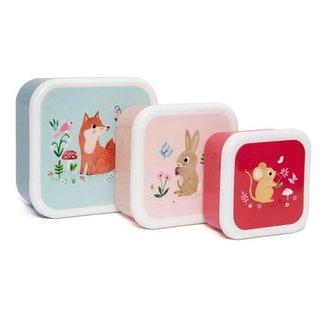 Petit Monkey Petit Monkey Lunchbox Set van 3 Woodland Stone Blue