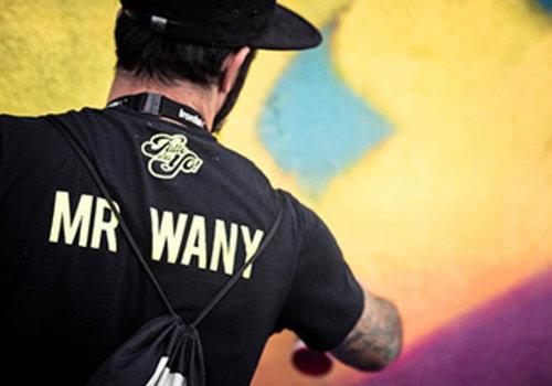 MR.WANY