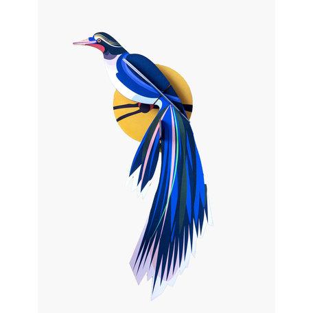 Paradise bird Flores TTM82