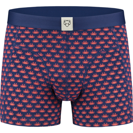 Boxer brief Teun