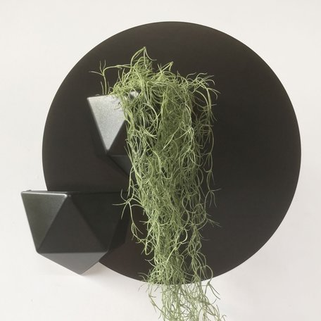 planter black