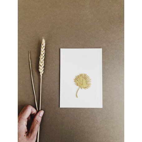 palm gift card