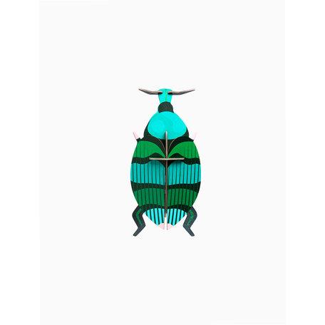 weevil beetle IMA60