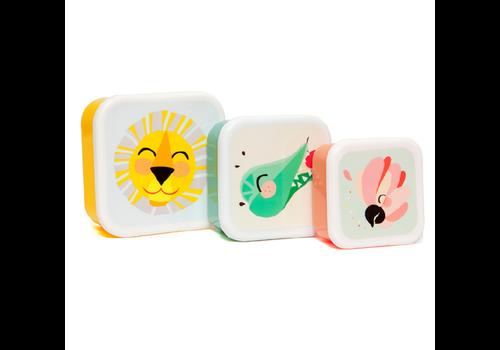 PETIT MONKEY - Lunchbox - Shiny Lion