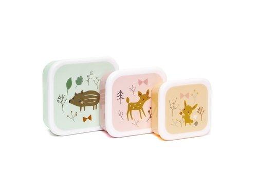 PETIT MONKEY - Lunchbox - Forest Friends