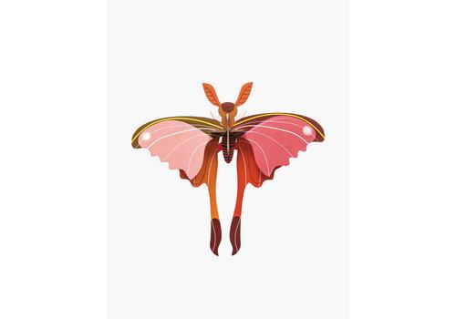 Studio Roof STUDIO ROOF - Walldecor - Pink Cornet Butterfly