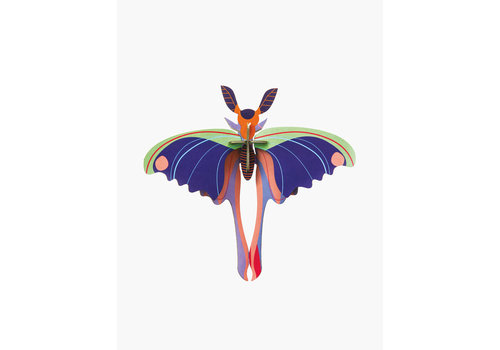 Studio Roof STUDIO ROOF - Walldecor - Blue Cornet Butterfly