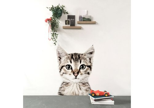 Groovy Magnets GROOVY MAGNETS - Magneetbehang - Poes 127x265cm
