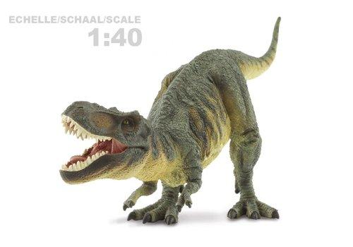 CollectA COLLECTA - Prehistorie - T-Rex 1:40