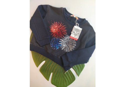 OUTLET - ANNE KURRIS - Sweatert Molton Navy - Maat 104/116
