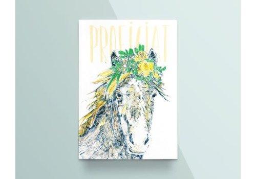 """Kathings Kathings - Postkaart - Animals  """"Proficiat"""" Wild Paard"""