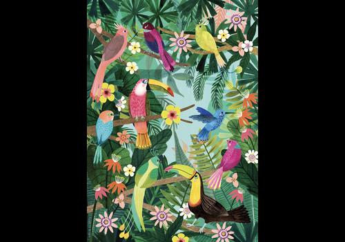 PETIT MONKEY - Poster 50x70 - Rain Forest Bird