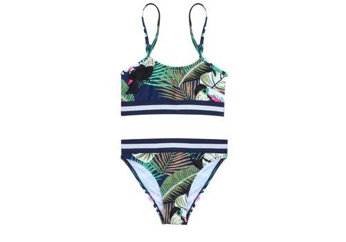 Claesen's Claesen's - Bikini - Parrot