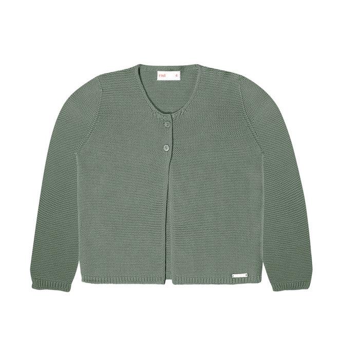 CONDOR - Sweater - Lichen green (761)