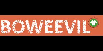 Bo Weevil