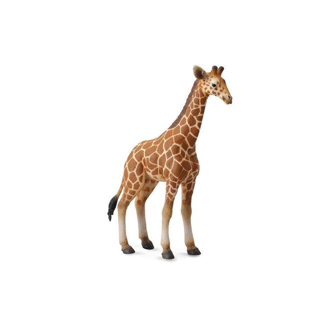 COLLECTA - Wilde Dieren -  Baby Giraf