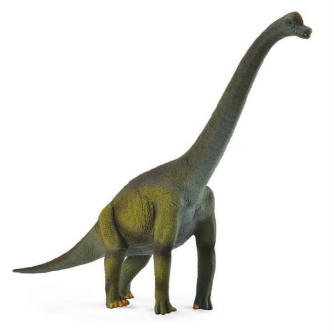 COLLECTA - Dinosaurus - Brachiosaurus (L)