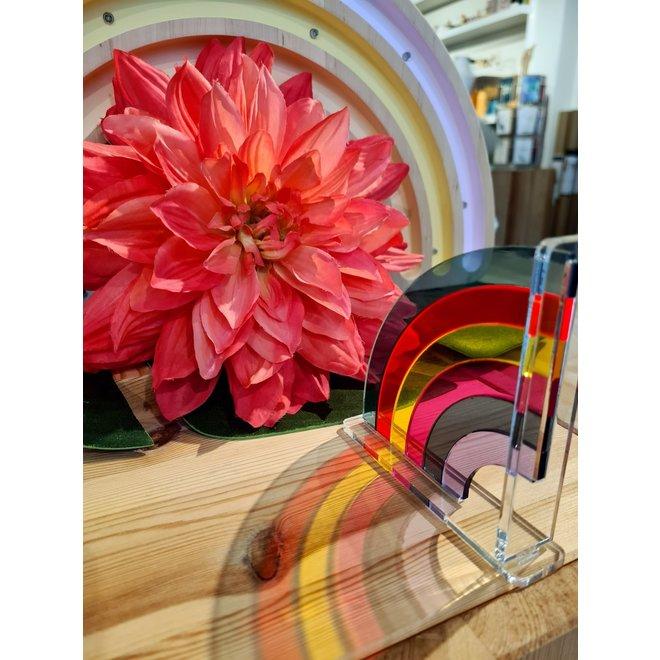 MOMANTAI - Regenboog - True Colors 12