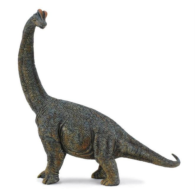 COLLECTA - Dinosaurus - Brachiosaurus 1:40