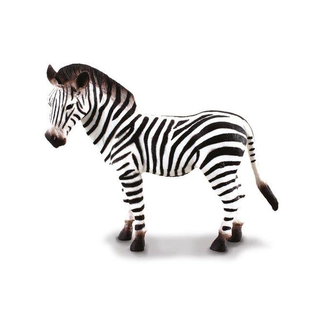 COLLECTA - Wilde Dieren - Common Zebra (L)