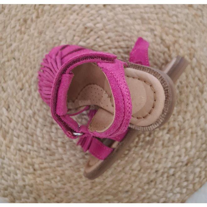 CLIC! - Fuchsia Ambra ( Maat 24 tem 34)
