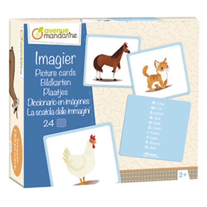 AVENUE MANDARINE - Educatief - Plaatjes Huisdieren in 10 talen