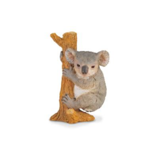 COLLECTA - Wilde Dieren - Koala klimmend (M)