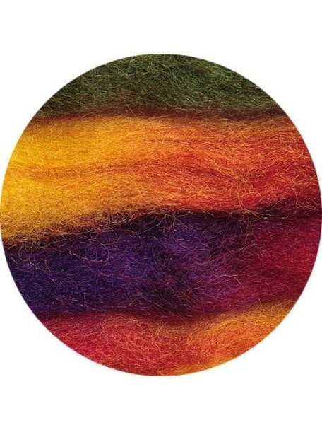 Space Tops Roving multicolour 10