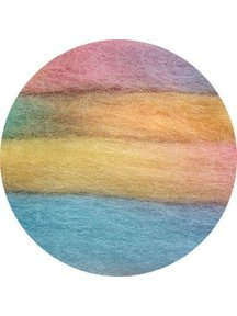Space Tops Roving multicolour 13