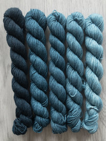 Sticks & Cups Balayage - Lying for Pampus - 5x 20gr 75%BFL - 25% nylon - 400m