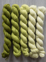 Sticks & Cups Balayage - Weiland Secrets - 5x 20gr 75%BFL - 25% nylon - 400m