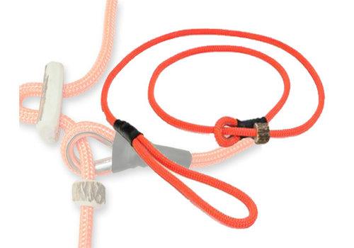 Lijnen-riemen-halsbanden