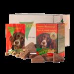 Energique volwassen hond groot verpakking