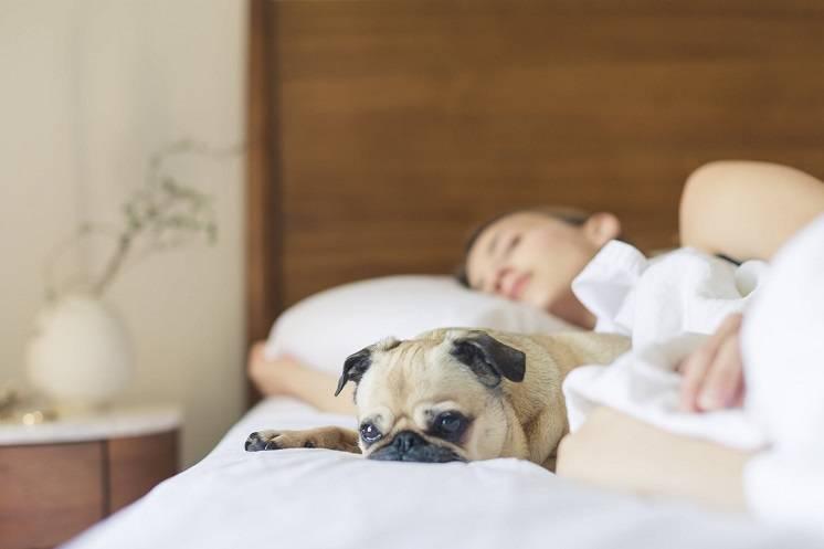 Verbeter je nachtrust door yoga