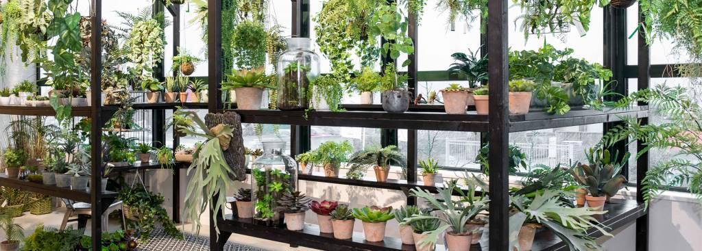 Wie lange halten künstliche Pflanzen?