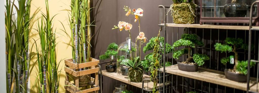Pflege der Künstlichen Pflanzen