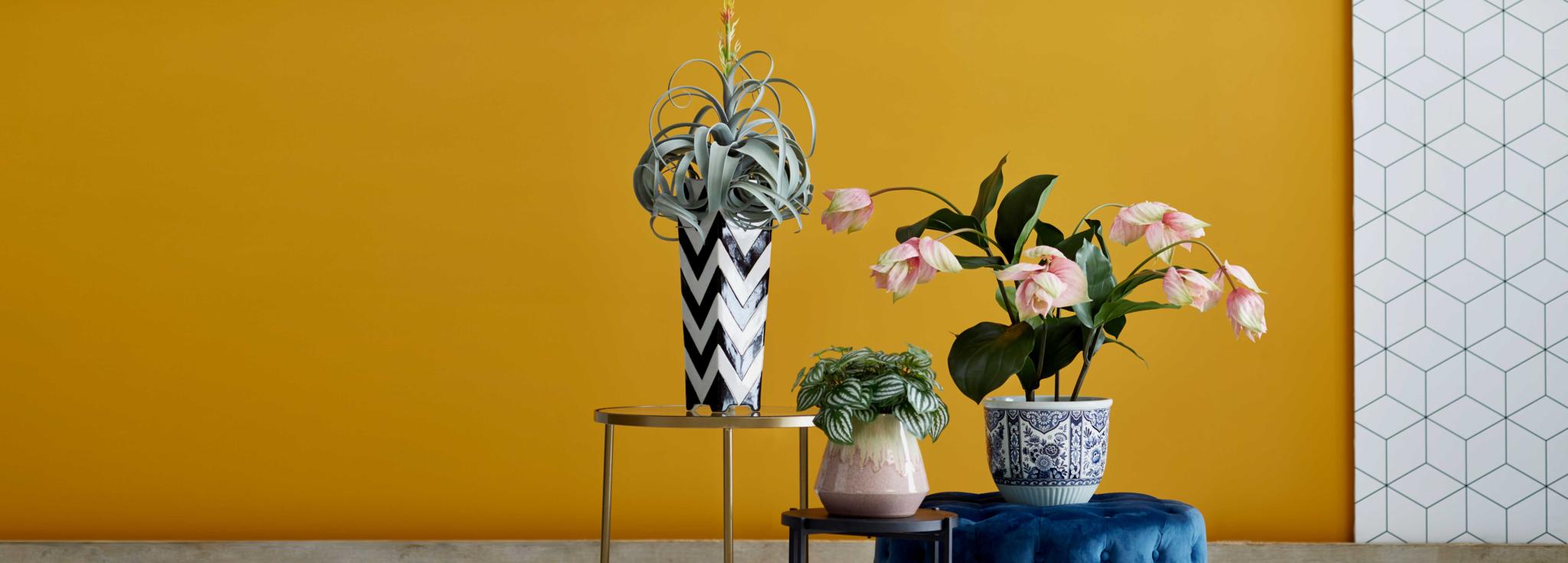 Worauf sollten Sie beim Kauf von Kunstblumen achten?