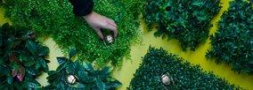 Kunstpflanzen, die so gut wie echt aussehen.