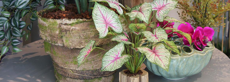 Was sind die Vorteile, von Kunstpflanzen gegenüber natürlichen Pflanzen