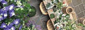 Warum jeder von Kunstpflanzen profitieren kann