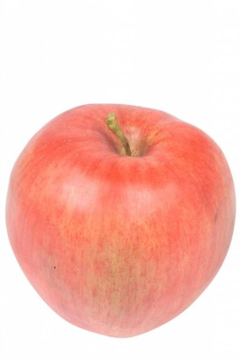 "Kunstfrucht ""Apfel"", rot, 9cm"