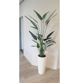 "Kunstpflanze ,,Heliconia"" 175cm"