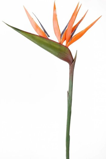 Kunstig orange Strelitzia 90cm
